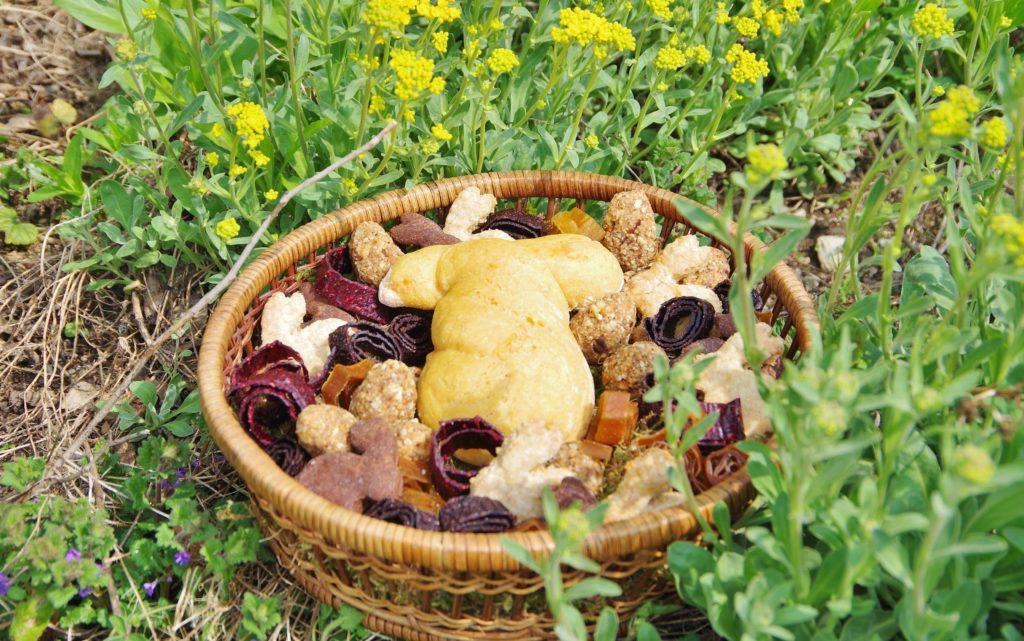 Osternest vegan und ohne Zucker