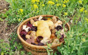 Unser veganes und zuckerfreies Osternest