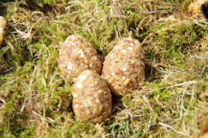 Haselnuss-Ostereier (glutenfrei)
